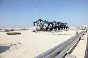 OPEC Forecast
